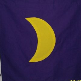 Planetary Banner (large) – Moon